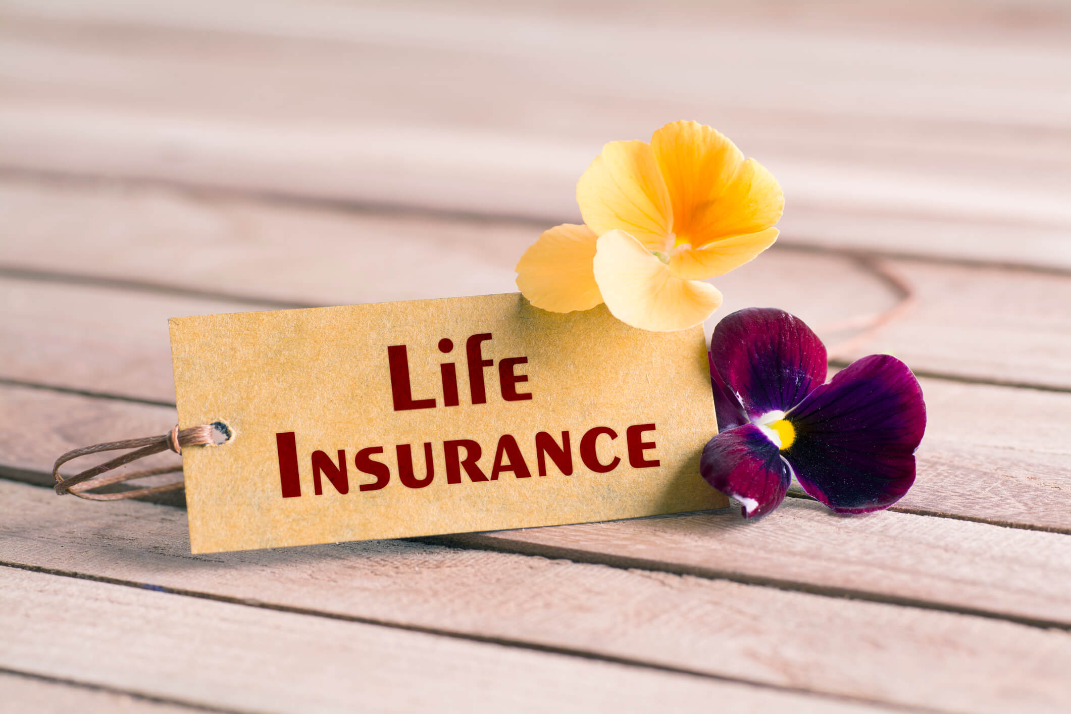 Life insurance tag with flower on a table